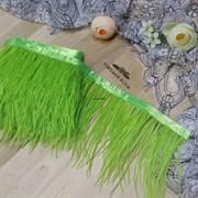 Перья страуса на ленте, салатовые (Зеленый)