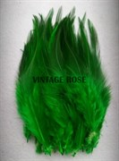 Перо фазана, зеленое
