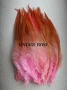 Перо фазана, розовое