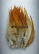 Перо фазана, натуральное